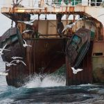 Russian companies sign pact to lessen trawling impacts