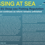 Download our briefing paper Missing At Sea – a new EU deep-sea fishing regulation