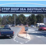Australian support for protection of deep sea life from high seas bottom trawling