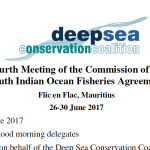DSCC intervention at the Fourth Meeting of the Commission of the South Indian Ocean Fisheries Agreement